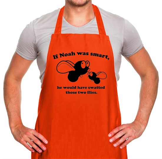 If Noah Was Smart Apron