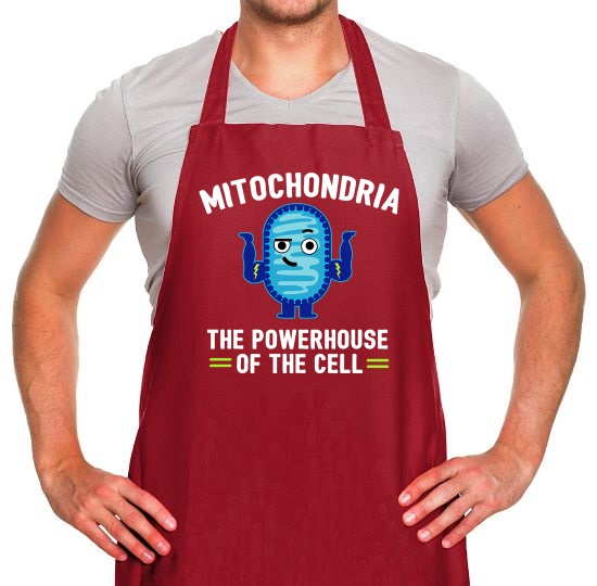 Mitochondria - The Powerhouse Of The Cell Apron