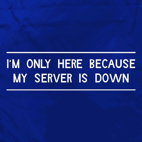I'm Only Here Because My Server Is Down Apron