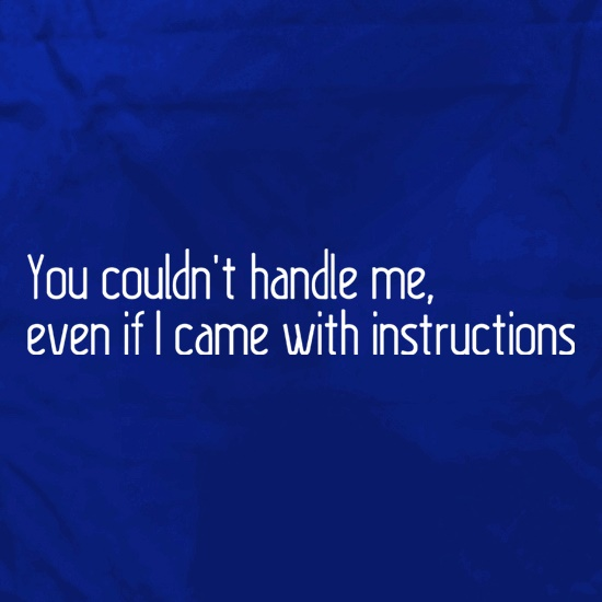 You Couldn't Handle Me, Even If I Came With Instructions Apron