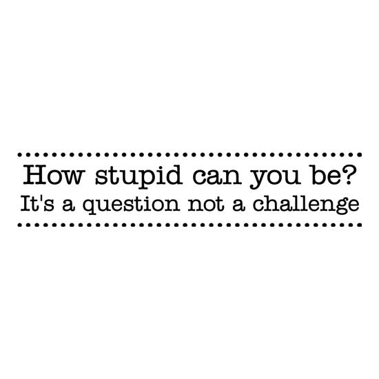 How stupid can you be - it's a question not a challenge t-shirts