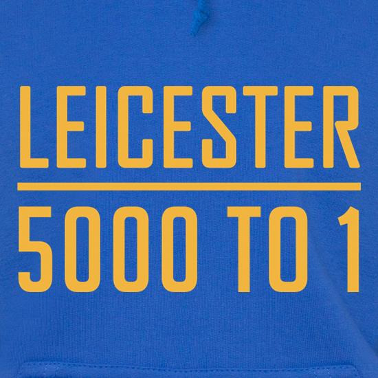 Leicester Odds 15/16 Hoodies