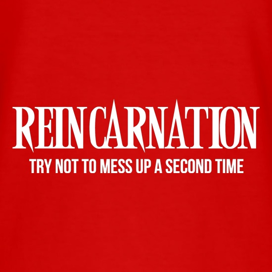 REINCARNATION try not to mess up a second time t shirt
