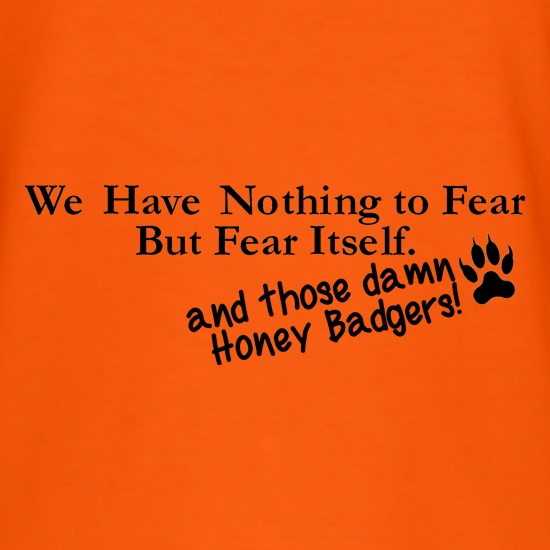 We have nothing to fear but fear itself, and those damn honey badgers! t shirt